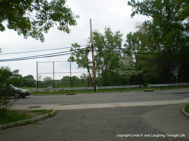 Baseball field across from Oakland Lake