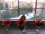 flowers in shotglasses on windowsill_photo 1