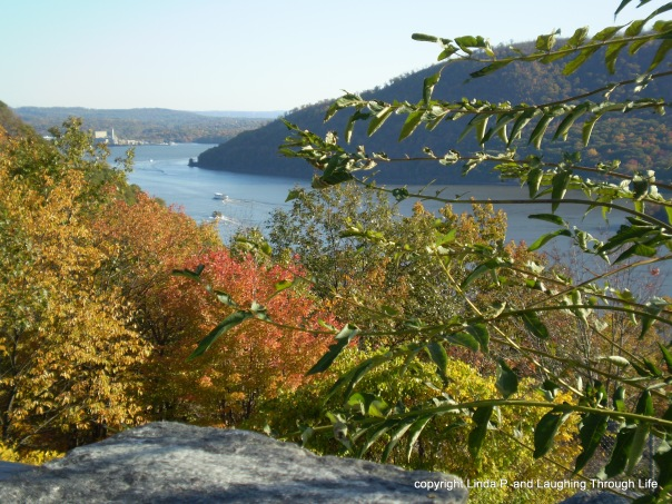 Fall Foliage, New York State, 2008