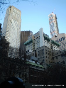 View from the MOMA outdoor sculpture garden