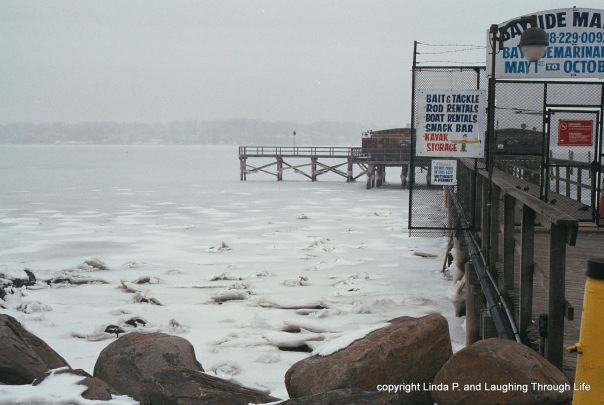 Frozen Bayside Marina at Little Neck Bay March 1, 2015 001