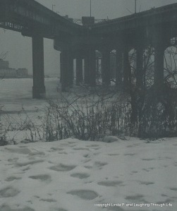 The park at the base of the Throgs Neck Bridge, 3/1/15. It's snowing.