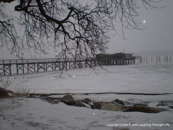 Bayside Marina at Little Neck Bay, 3-1-15 in the snow