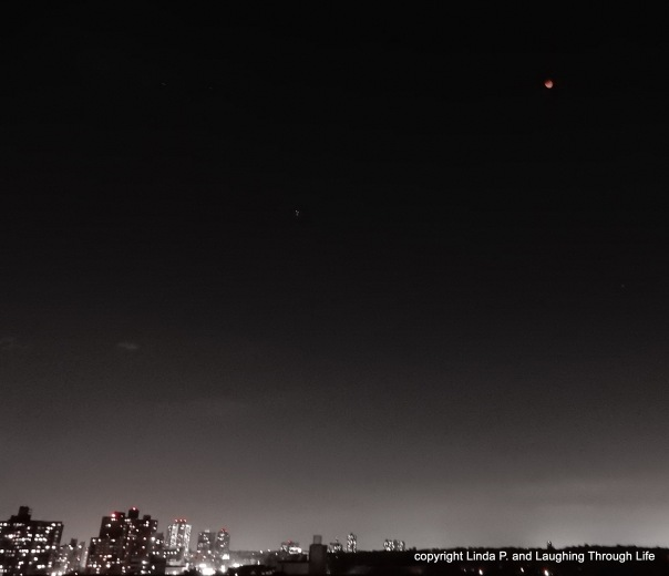 blood moon over the roof