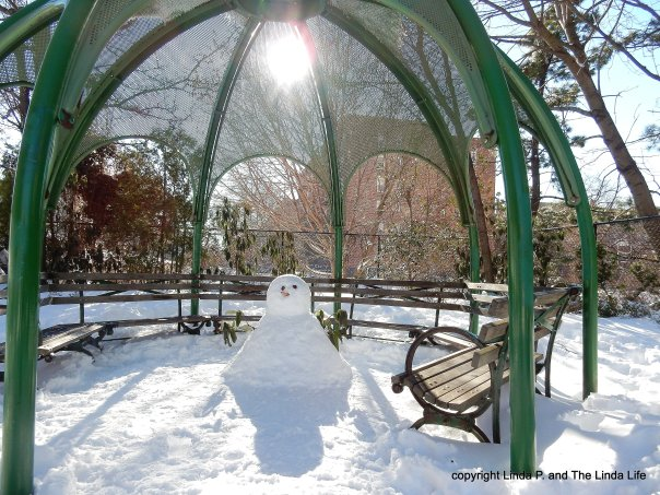 Snowperson 1-24-16 #snowman