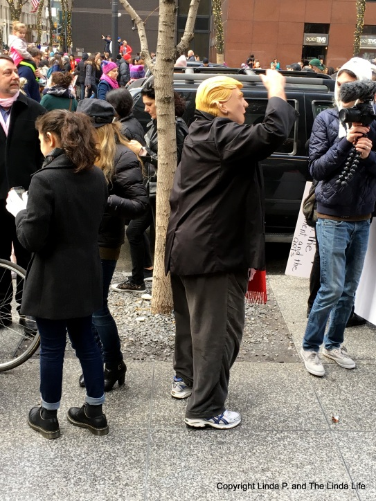 Dude in Trump mask at Women's March on NY 1-21-17