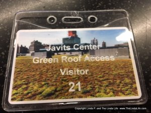 Visitors pass to Jacob Javits Convention Center in NYC. CREDIT Linda P. and The Linda Life. MUST OBTAIN PERMISSION BEFORE USING THIS IMAGE. www.TheLindaLife.com