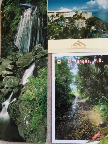 Postcards from Puerto Rico: El Yunque and El Conquistador
