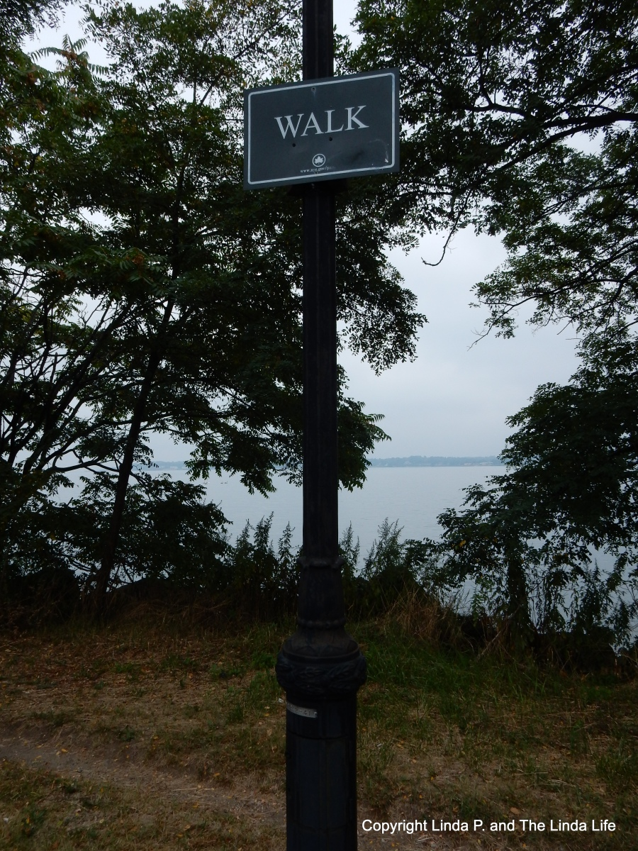 The Pedestrian at the Walkathon: Weekly Photo Challenge