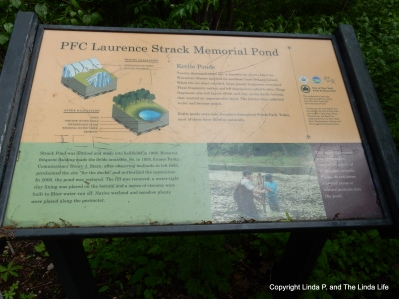 FOREST PARK, NYC Laurence Strack Kettle Pond sign