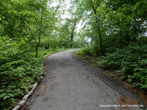 FOREST PARK, NYC Undulationg path to Laurence Strack Memorial Pond