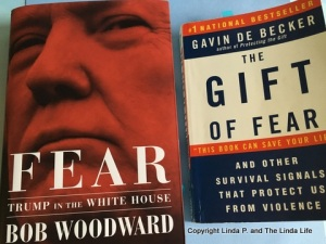 Covers of FEAR by Bob Woodward and THE GIFT OF FEAR by Gavin De Becker